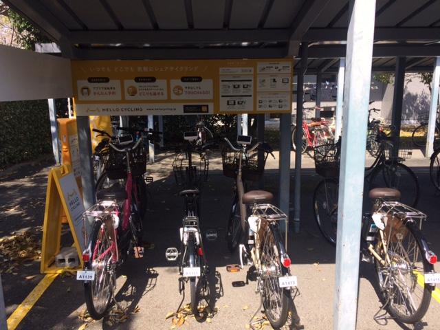 佐賀県総合体育館 (HELLO CYCLING ポート) image