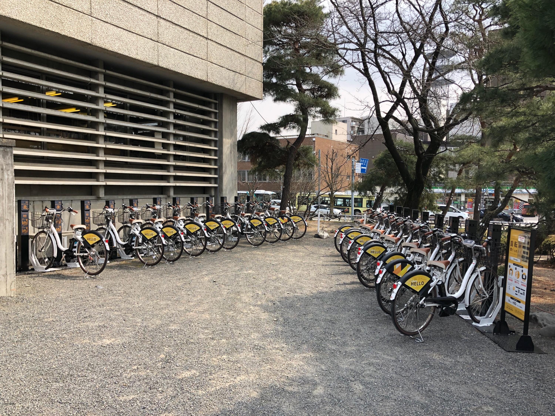 松本城 (HELLO CYCLING ポート) image